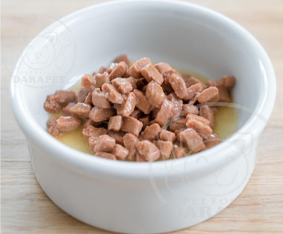 بررسی کیفیت غذای بچه گربه 6 ماهه
