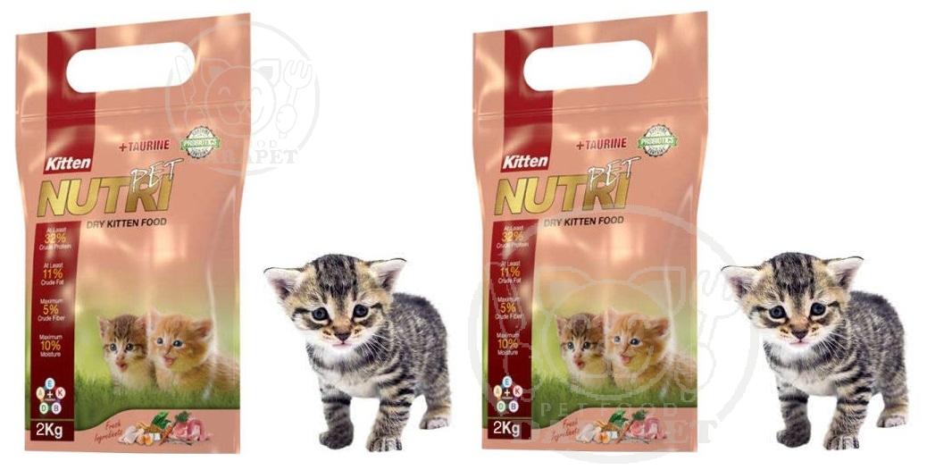 عرضه کننده غذای 2 کیلویی بچه گربه