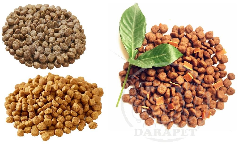 توزیع انواع غذا خشک سگ ایرانی