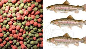 توزیع کننده غذای ماهی پرورشی قزل الا