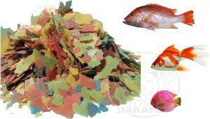 عرضه کننده غذای ورقه ای انواع ماهی