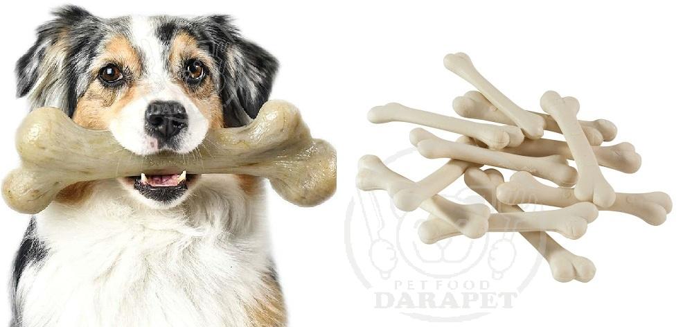 میزان مصرف تشویقی دندانی سگ